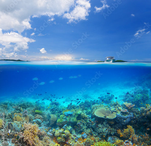 Staande foto Koraalriffen Coral reef on background blue sky and islands.