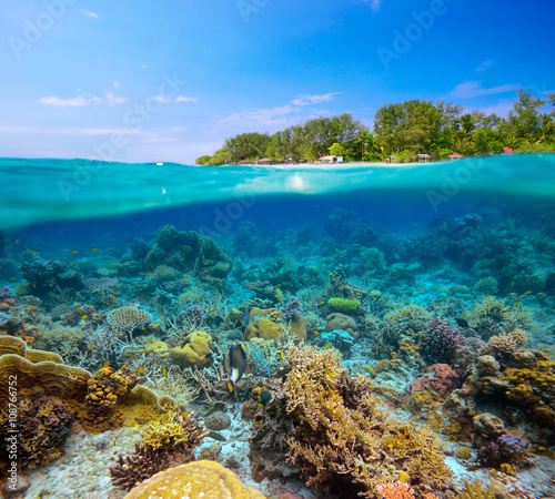 fototapeta na szkło tropical beach on island Meno,Indonesia under and above water.