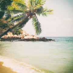 Panel Szklany Morze Vintage tropical beach in summer - nature background