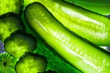 Ripe Green Cucumber Closeup. Shooting Against The Light