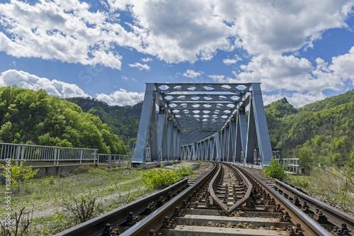 Staande foto Afrika Entrance view of steel railway bridge