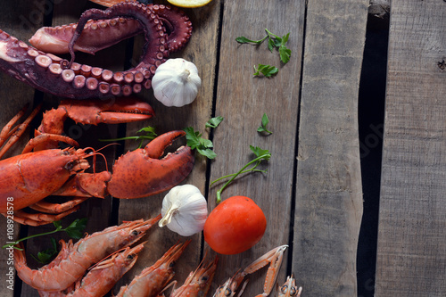 many types of fish on the table. Poster