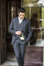 Handsome Bridegroom In Grey Suit