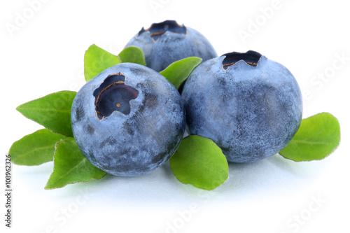 Fotografija Blaubeere Blaubeeren Heidelbeere Heidelbeeren Beeren Beere Fruch