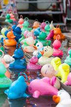 Plastic Ducks At A Fair