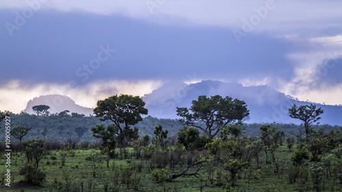 Petroriuskop landscape in Kruger National park, South Africa
