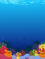 Fototapeta na wymiar beauty coral and underwater background