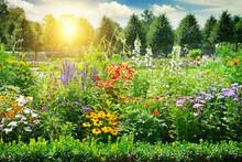 Multicolored Flowerbed In Park.