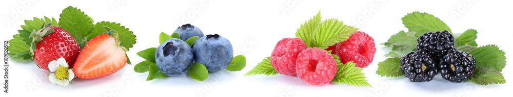 Sammlung Beeren Erdbeeren Blaubeeren Himbeeren Früchte in einer
