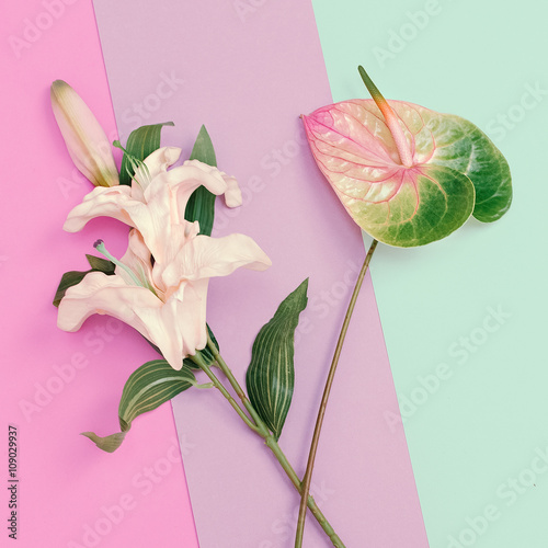 Fotografie, Obraz  Minimalist fashion. Flowers. Lily and Calla. Pastel colors trend