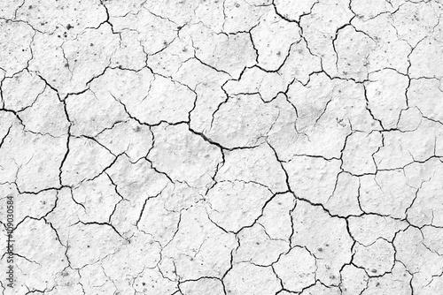 Fotografía  Crack soil texture background