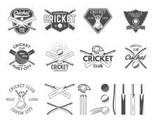 Set Of Vector Cricket Sports L...
