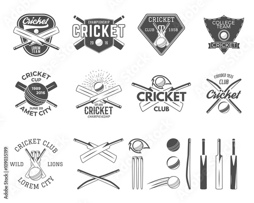 Stampa su Tela Set of vector cricket sports logo designs