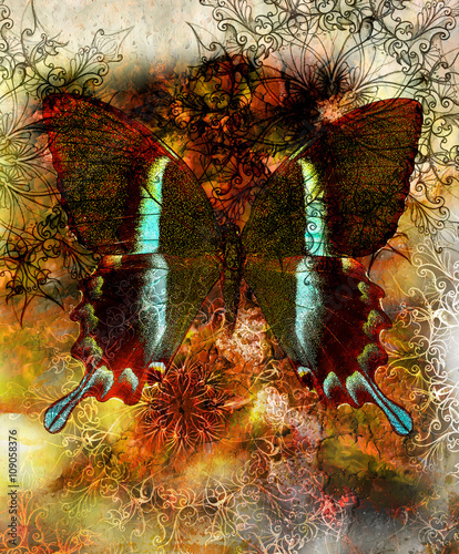 Foto op Aluminium Vlinders in Grunge Butterfly and oriental ornamental mandala and color abstract background with spots, black and brown color