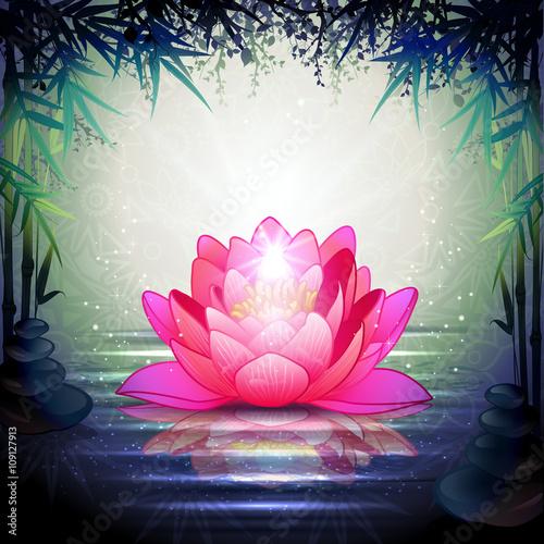 Lotus Flowers in a Zen Garden Slika na platnu