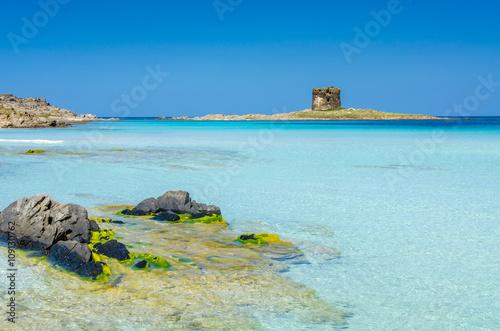 Photo  Beach Pelosa on Sardinia, Italy