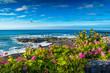 canvas print picture - Teneriffa Tenerife
