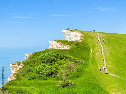 Fotografie, Obraz  The footpath on a white chalk cliffs near Eastbourne