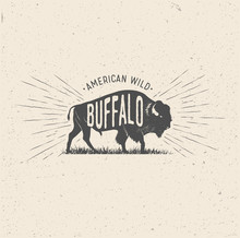 Wild Buffalo. Vintage Styled Vector Illustration Of The American Buffalo.