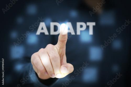 Photo Businessman touching Adapt