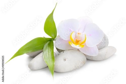 zen-kamienie-bazaltowe-orchidea-i-bambus