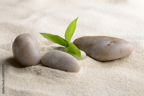 Acrylic Prints Stones in Sand zen stones and bamboo on the sand
