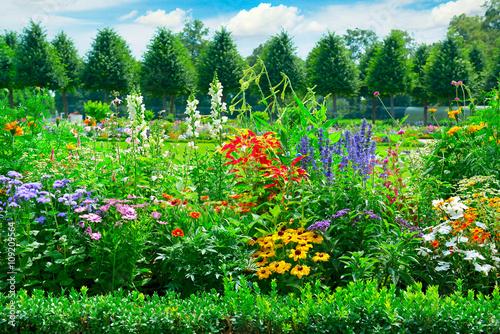 Obraz na płótnie Blossoming flowerbed in the park