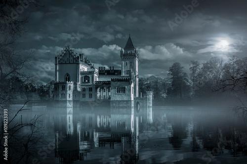 Mystic Water castle in moonlight Poster