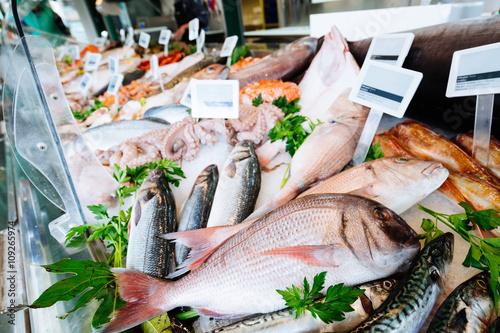 Valokuva  Fresh seafood on ice at the fish market