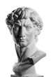canvas print picture - gypsum head of Michelangelo's David isolated over a white background