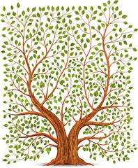 NaklejkaOld vintage tree illustration