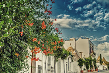 The Trulli Houses Of Alberobel...