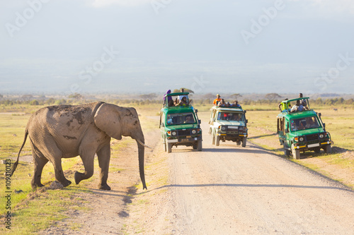 Printed kitchen splashbacks South Africa Tourists in safari jeeps watching and taking photos of big wild elephant crossing dirt roadi in Amboseli national park, Kenya. Panorama.