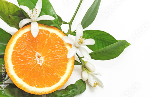 Half Orange Fruit with leaves and blossom isolated on white back