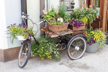 Fototapeta na wymiar Beautiful Flowerpots