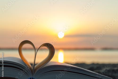 Love Stories Canvas Print