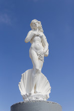 Statue Of Aphrodite In A Shell