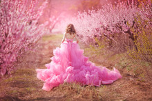 Beautiful Girl In A Pink Dress In Peach Garden