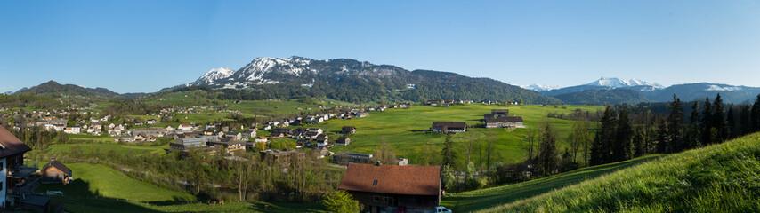 Fototapeta na wymiar Löwenzahnblüte im Bregenzerwald