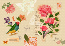 Vintage Style Collage Postcard With Drawings Of Roses And Butterflies