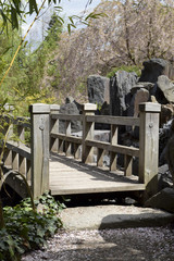 FototapetaSpring in japanese garden - Frühling im japanischen Garten