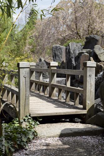 Spring in japanese garden - Frühling im japanischen Garten - 109440574
