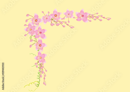 Photo Stands Floral woman pink flowers frame or border background vector illustration