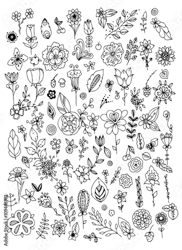Set of black and white doodle flowers leaves. Hand drawn ...