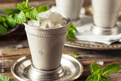 Valokuva  Cold Refreshing Classic Mint Julep