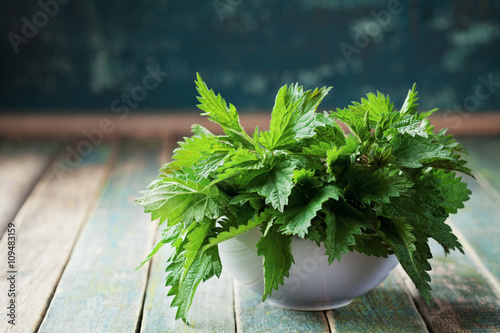 Aluminium Prints Condiments Young nettle leaves in pot on rustic background, stinging nettles, urtica