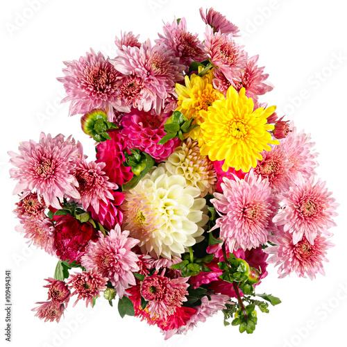 Poster de jardin Dahlia Autumn flowers