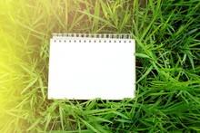 Blank Paper Calendar Page On N...