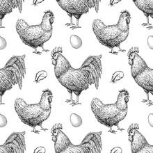 Vector Chicken Breeding Hand Drawn Seamless Pattern.