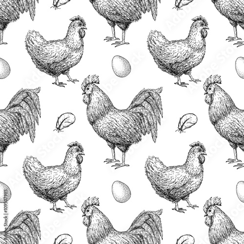 Cotton fabric Vector chicken breeding hand drawn seamless pattern.